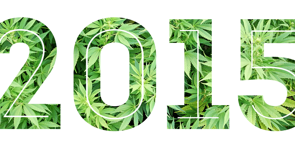 2015-top-stoner-gifts-and-pothead-gifts-from-highly-appealing-2